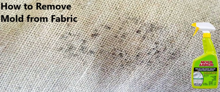 How to Remove Mold from Fabric